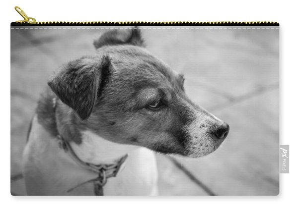 Carry-all Pouch featuring the photograph Jack Russell by Nick Bywater