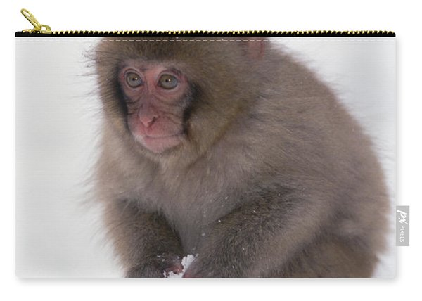 Japanese Macaque Macaca Fuscata Baby Carry-all Pouch