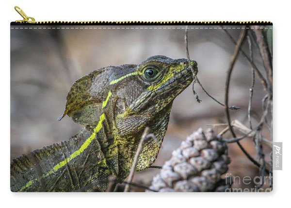 Carry-all Pouch featuring the photograph Jesus Lizard #2 by Tom Claud