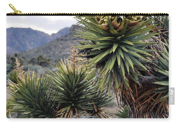 Joshua Tree Bloom Rainbow Mountain Carry-all Pouch