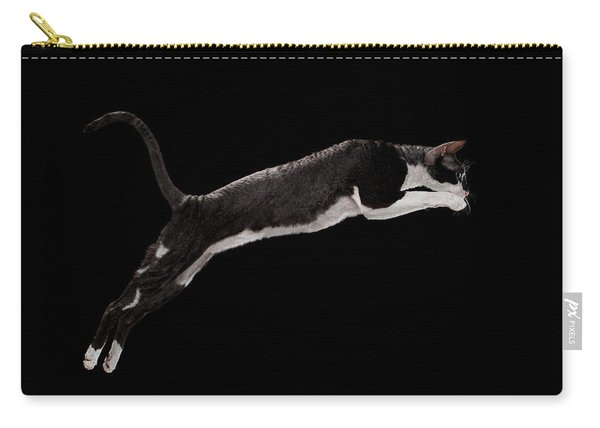 Jumping Cornish Rex Cat Isolated On Black Carry-all Pouch