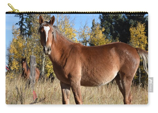 Horse Cr 511 Divide Co Carry-all Pouch