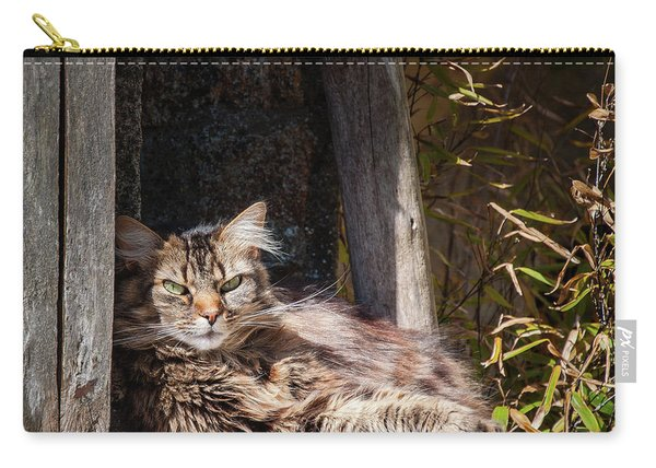 Just Lazing Around Carry-all Pouch
