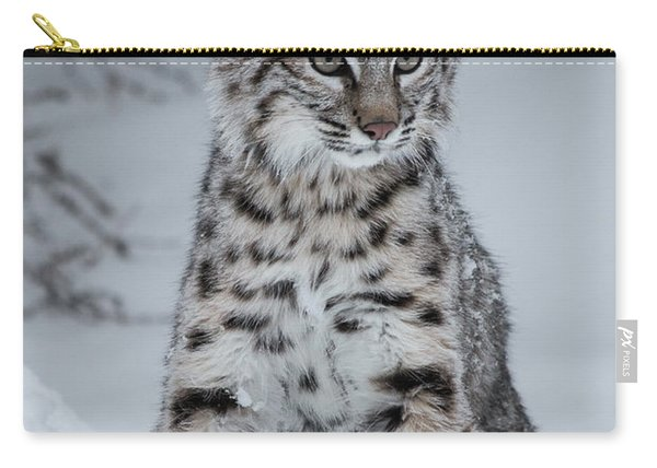 Juvenile Bobcat In The Snow Carry-all Pouch