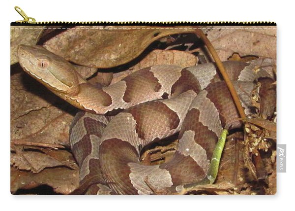Juvenile Copperhead Horizontal Carry-all Pouch