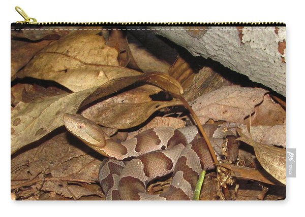 Juvenile Copperhead  Carry-all Pouch