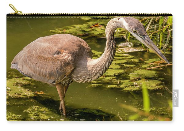 Juvenile Great Blue Heron Carry-all Pouch