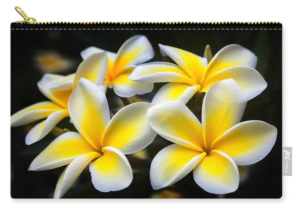 Plumerias Canvas Print,photographic Print,art Print,framed Print,iphone Case,samsung Galaxy Case, Carry-all Pouch