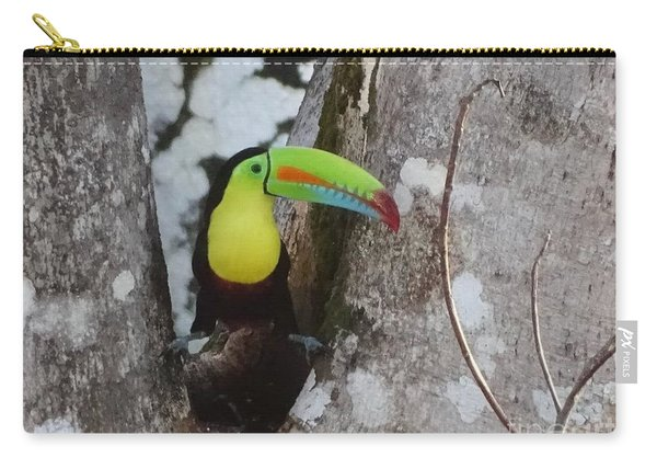 Keel-billed Toucan #2 Carry-all Pouch