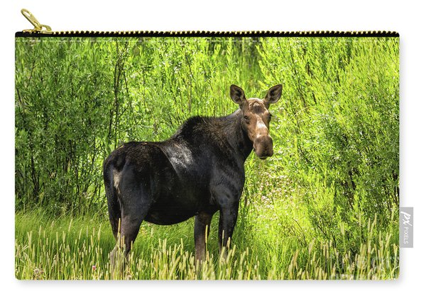 Keep Your Distance Wildlife Art By Kaylyn Franks Carry-all Pouch