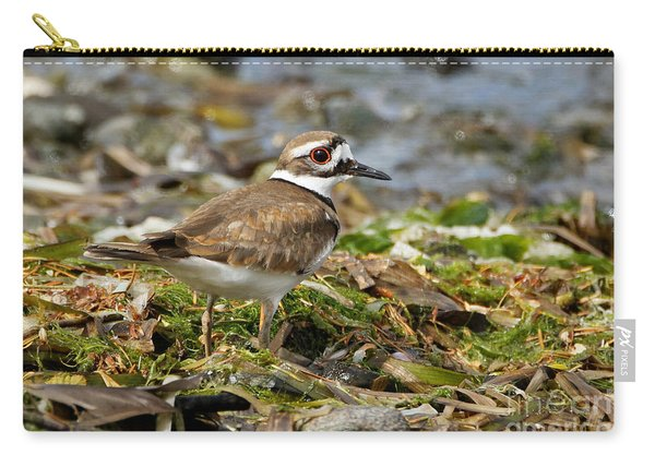 Killdeer At The Coast Carry-all Pouch