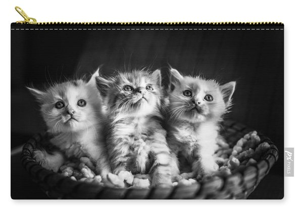 Kitten Trio Carry-all Pouch
