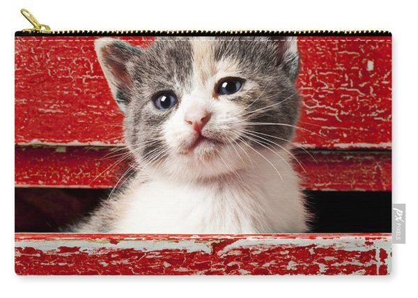 Kitten In Red Drawer Carry-all Pouch