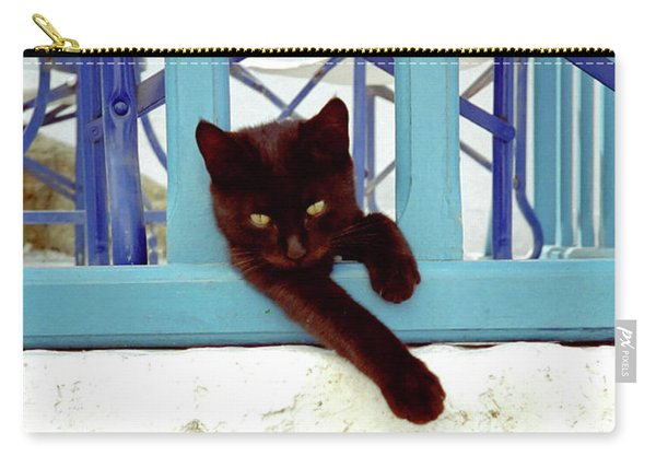 Kitten With Blue Rail Carry-all Pouch