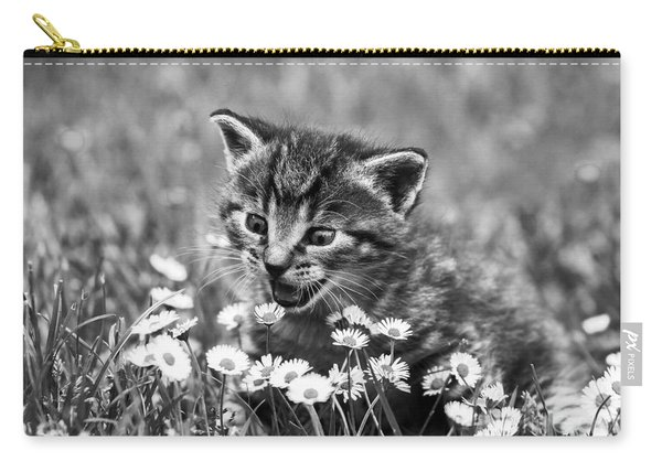 Kitten With Daisy's Carry-all Pouch