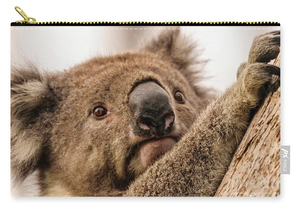 Koala 3 Carry-all Pouch