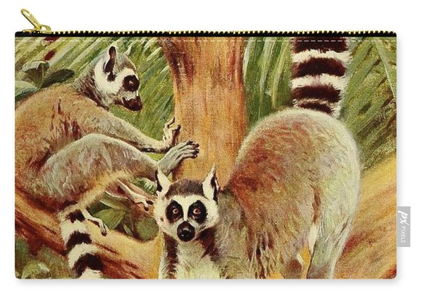 Kuhnert, Friedrich Wilhelm 1865-1926 - Wild Life Of The World 1916 V.3 Ring-tailed Lemur Carry-all Pouch