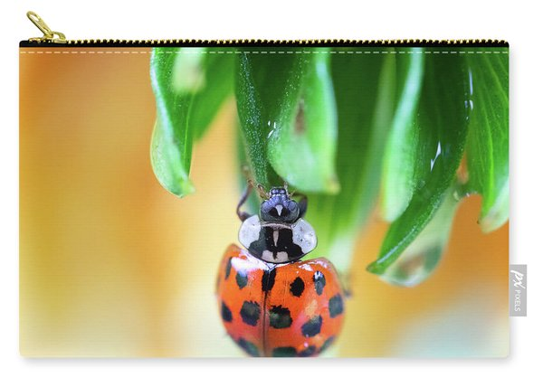 Carry-all Pouch featuring the photograph Lady Bug In A Heatwave by Brian Hale