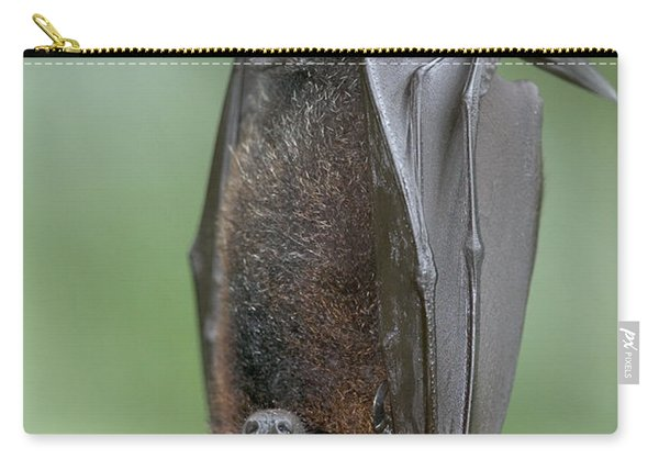Large Flying Fox Pteropus Vampyrus Carry-all Pouch
