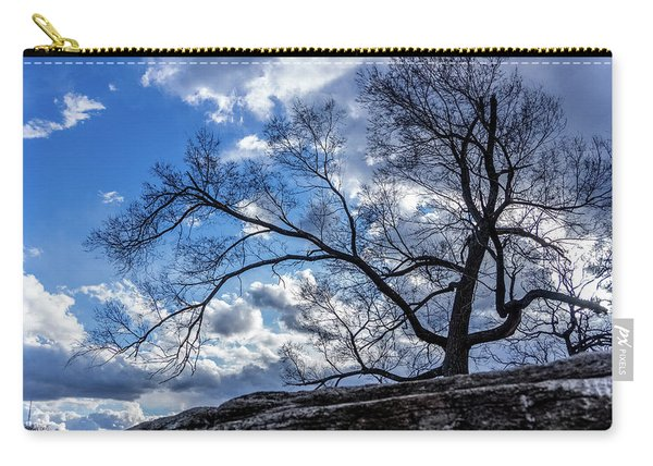 Late Autumn Tree Carry-all Pouch