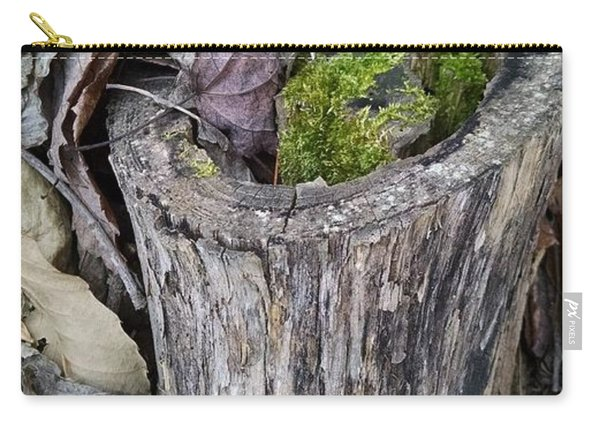 Late Fall Reflections Carry-all Pouch