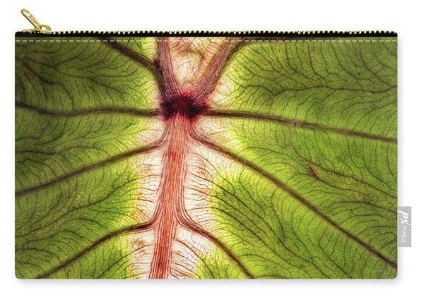Leaf With Veins Carry-all Pouch