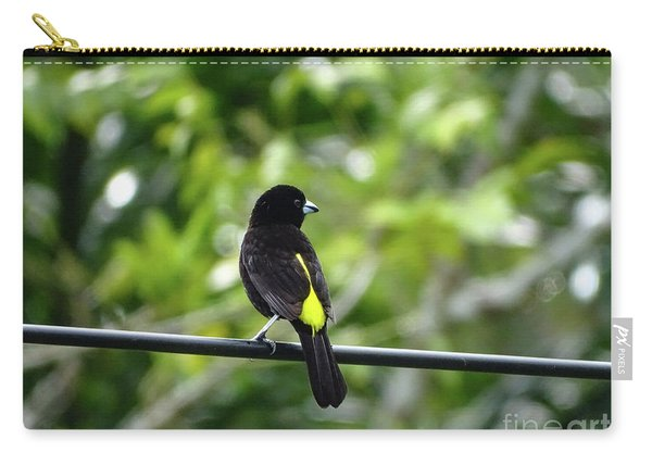 Lemon-rumped Tanager Carry-all Pouch