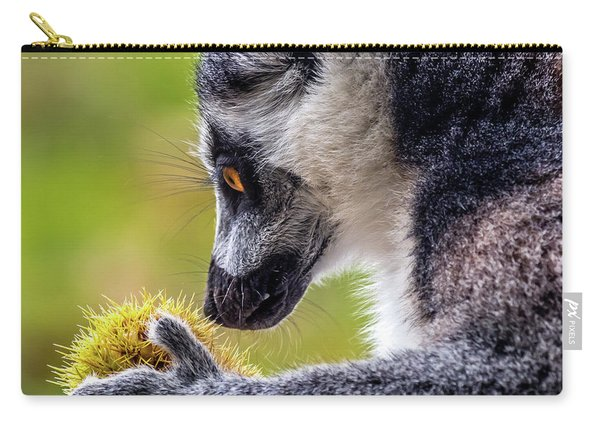 Carry-all Pouch featuring the photograph Lemur And Sweet Chestnut by Nick Bywater