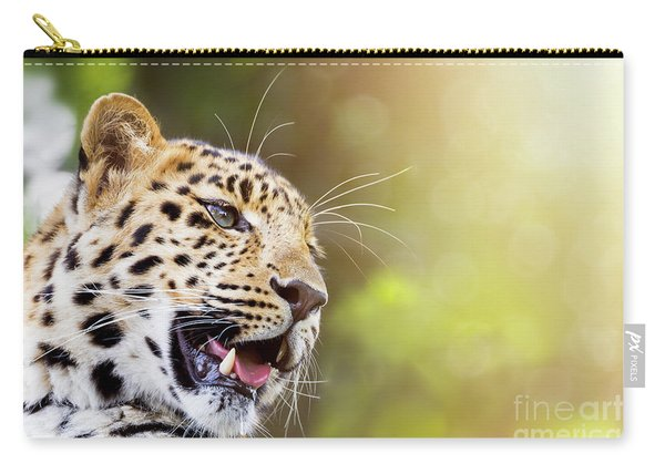 Leopard In Sunlight Carry-all Pouch
