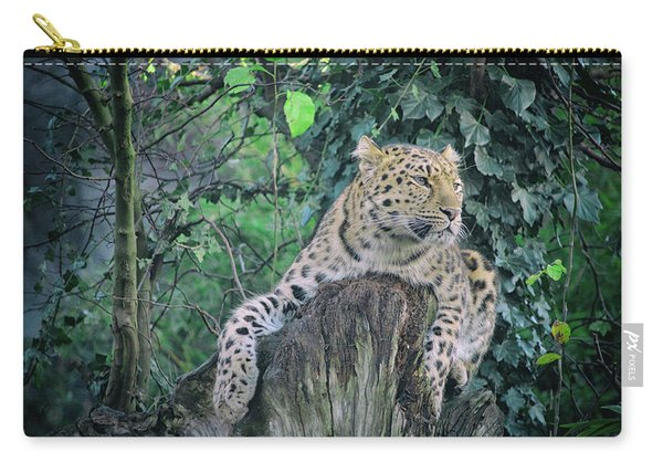 Leopard Lookout Carry-all Pouch