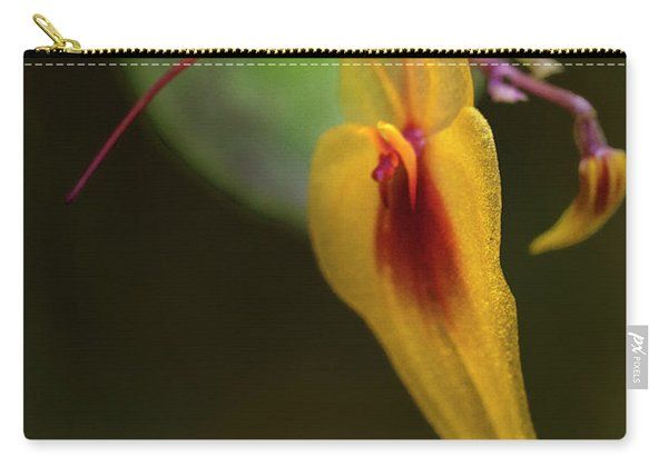 Lepanthes Maxonii Orchid Macro Carry-all Pouch