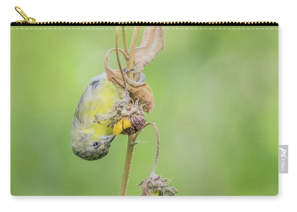 Lesser Goldfinch 4057-071117-1cr Carry-all Pouch
