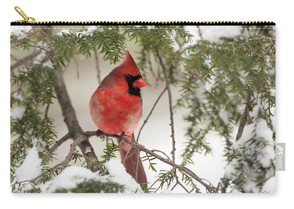 Leucistic Northern Cardinal Carry-all Pouch