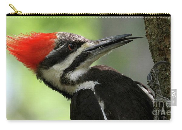 Lick It Up - Pileated Woodpecker Carry-all Pouch
