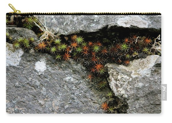 Life Lived In The Cracks Carry-all Pouch
