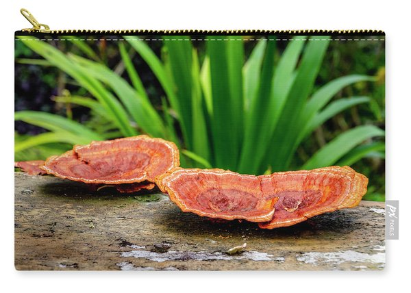 Life On A Log Carry-all Pouch