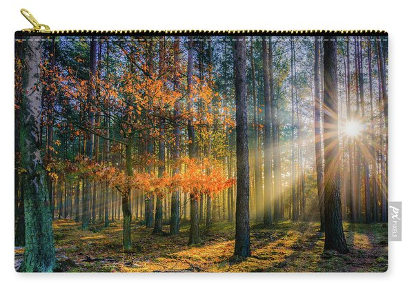 Carry-all Pouch featuring the photograph Light Catcher by Dmytro Korol