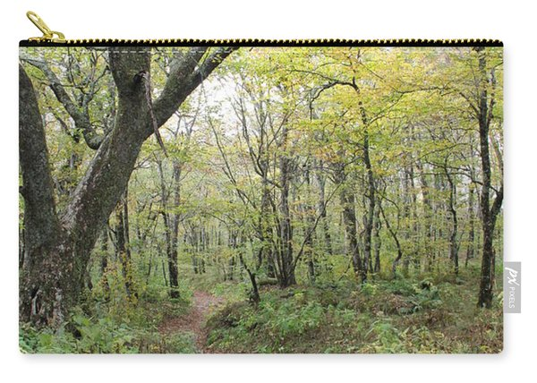Light On Path Carry-all Pouch