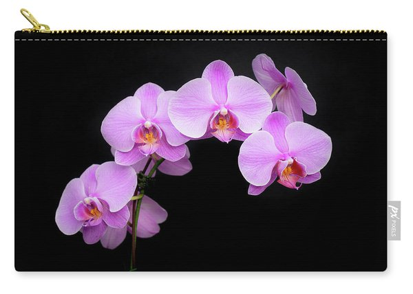 Light On The Purple Please Carry-all Pouch