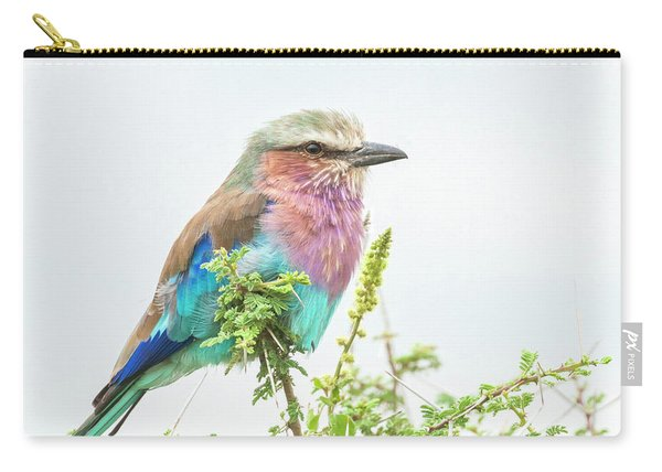 Lilac Breasted Roller. Carry-all Pouch
