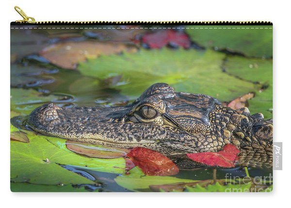 Carry-all Pouch featuring the photograph Lily Pad Gator by Tom Claud
