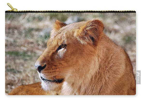 Lion Around Carry-all Pouch