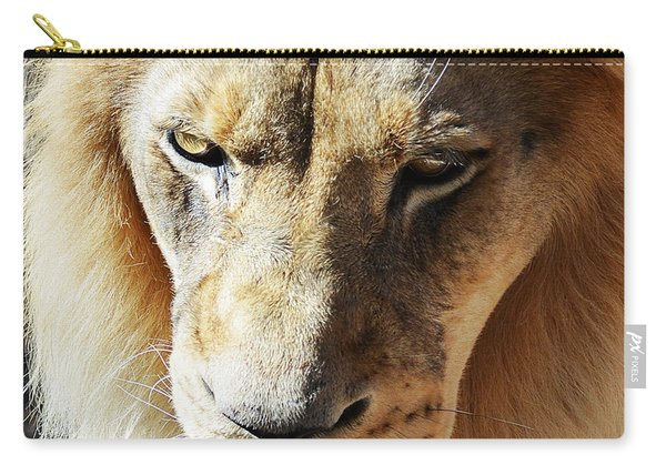 Lion Head Face Eyes Mane Front View Macro Close Up Carry-all Pouch
