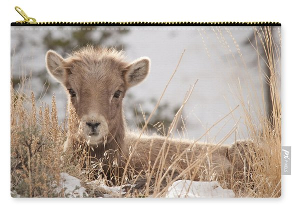 Little Bighorn Carry-all Pouch