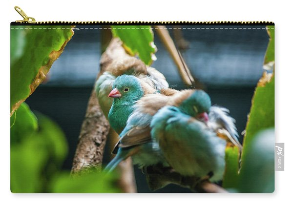 Little Birds Carry-all Pouch