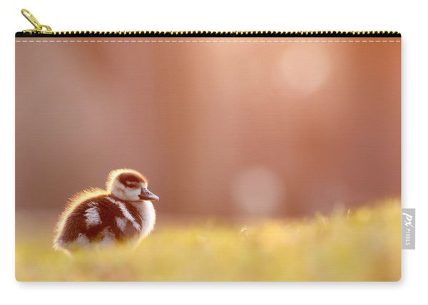 Little Furry Animal - Gosling In Warm Light Carry-all Pouch
