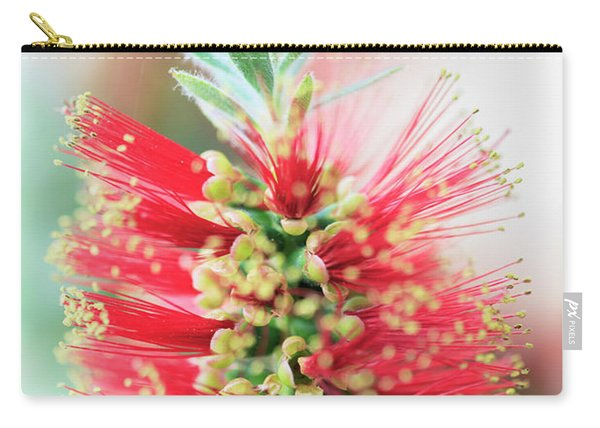 Little John Dwarf Bottlebrush Bloom Carry-all Pouch