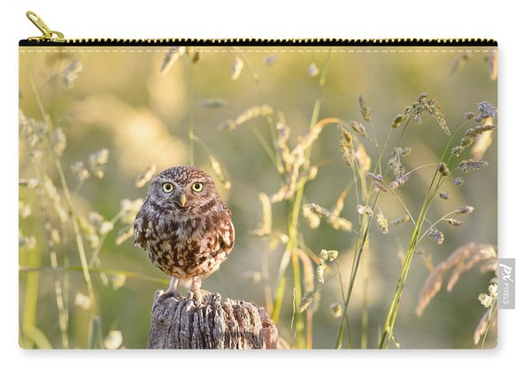 Little Owl Big World Carry-all Pouch