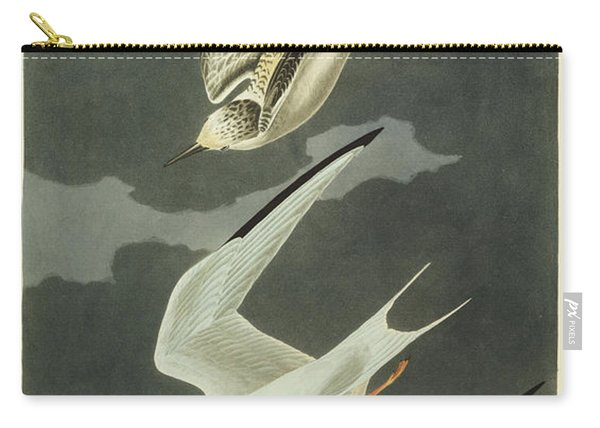 Little Tern Carry-all Pouch