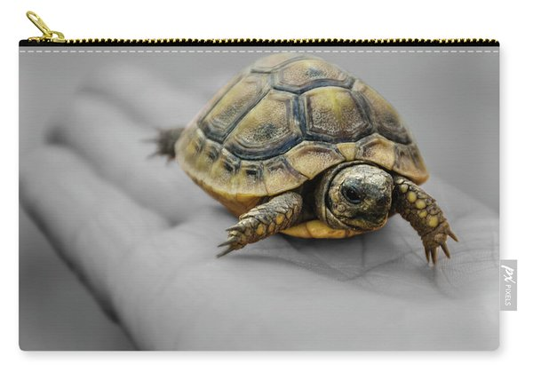 Little Turtle Baby Carry-all Pouch